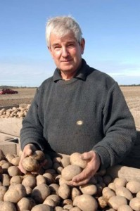 Graeme in the potato paddock.