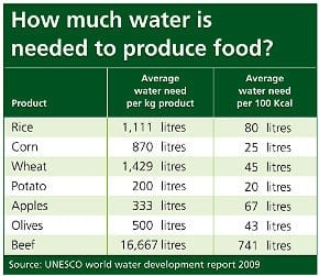 Table showing average water need per kg product for foods such as rice, potatoes and beef